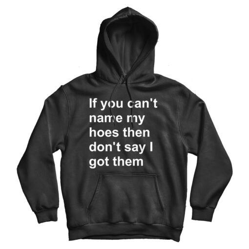 If You Can't Name My Hoes Then Don't Say I Got Them Hoodie